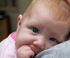 poza bebe